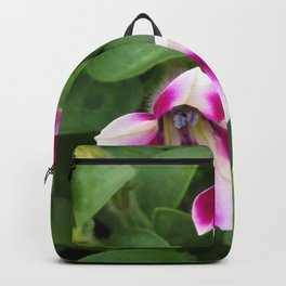 Bi-Color Calibrachoa Backpack