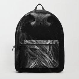 Scottish Highland Cattle Baby - Black and White Animal Photography Backpack