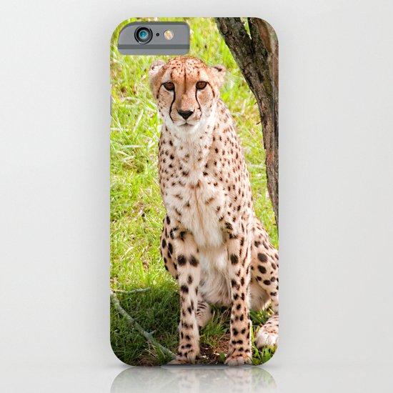 Hey Kitty iPhone & iPod Case
