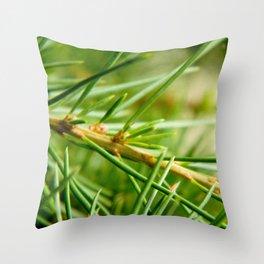 Pine/Fir Tree Throw Pillow
