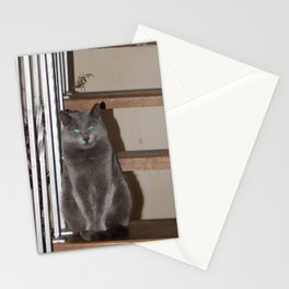 Cat cat on the stairs Stationery Cards