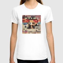 Pixel Paak T-shirt