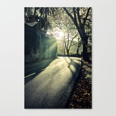 Sintra forest Canvas Print