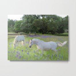 Lavendar Pastures Metal Print