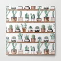 Cactus Shelf Rose Gold Green by naturemagick