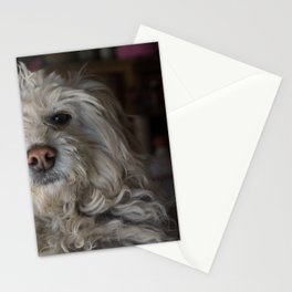 Juanito Stationery Cards
