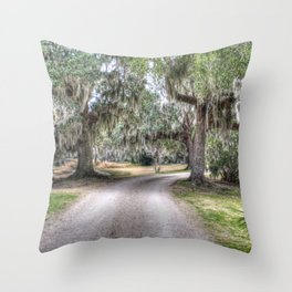 Avery Island Road Throw Pillow