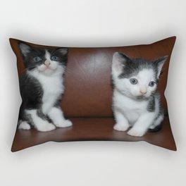 The Stray Cats Rectangular Pillow