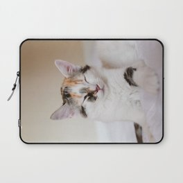 Sleepy cat (II) Laptop Sleeve