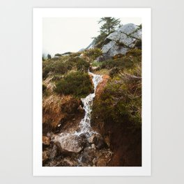 Cascade Waterfall Art Print