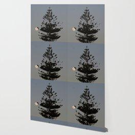 Araucaria tree, full moon, flight of birds Wallpaper