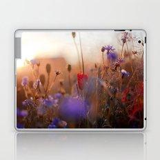 Beautiful Nature Laptop & iPad Skin