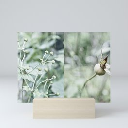 Gray-green garden plants Mini Art Print