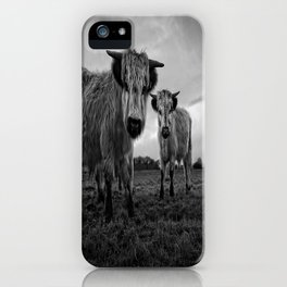 Two Shaggy Cows iPhone Case