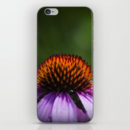 lite brite iPhone Skin