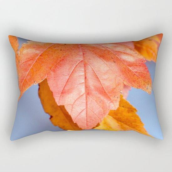Nature's Pigment Rectangular Pillow