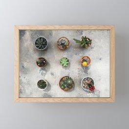 Cactus family Framed Mini Art Print