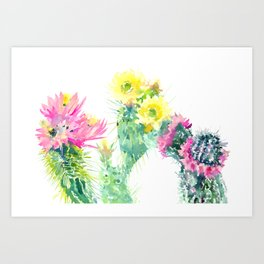 Cacti Succulents, Desert design Arizona Cacti Southwestern Art Art Print