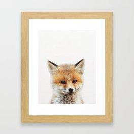 Baby Fox, Baby Animals Art Print By Synplus Framed Art Print