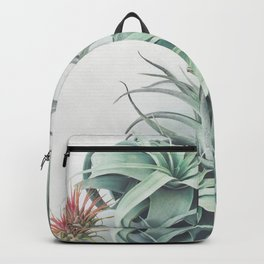 Air Plant Collection Backpack