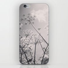 Cow Parsley iPhone Skin