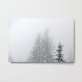 Winter Wanderings - 69/365 Metal Print