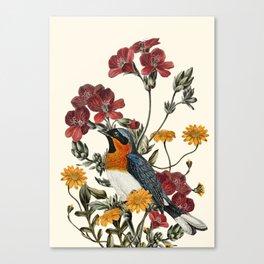 Little Bird and Flowers Canvas Print