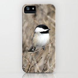 Feather weight iPhone Case
