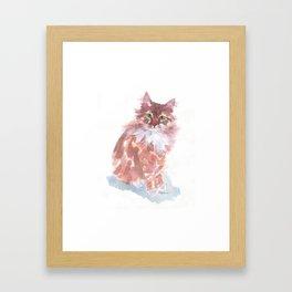 Ginger Peach Framed Art Print