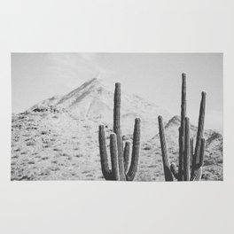 DESERT XIV / Arizona Rug