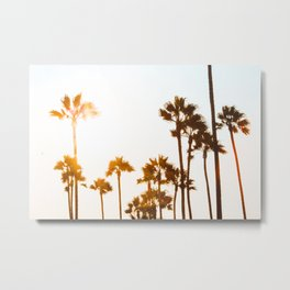 Venice Palms Metal Print