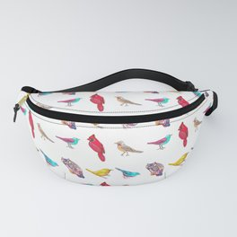 Don't Feed the Birds Pattern Fanny Pack