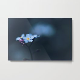 Forget Me Not - Beauty In Nature Metal Print