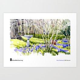 """Shari Blaukopf, """"Blue Lawn"""" Art Print"""