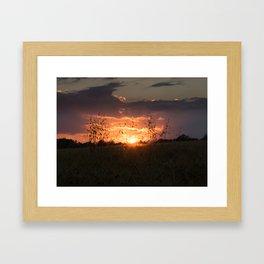 Shine between grain Framed Art Print