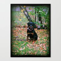 puppy Canvas Prints featuring Puppy by PSimages