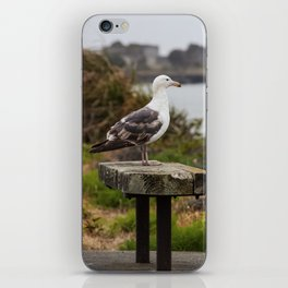 Watchin' The Tide Roll Away iPhone Skin