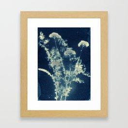 Botanicus (15), Botanical Art Print, Art Print, Botanical Poster, Vintage Print, Home Decor Framed Art Print