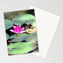 Beijing Imperial garden | Jardin Impérial Stationery Cards