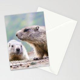 Alpine Marmots Stationery Cards