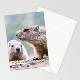 Alpine Marmots Stationery Cards