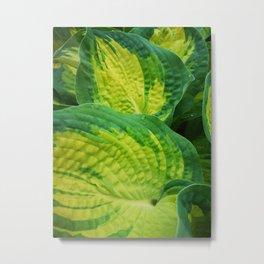 Super green Metal Print