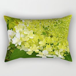 Elegant Chartreuse Green Limelight Hydrangea Macro Rectangular Pillow