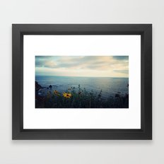 Pelican Cove Framed Art Print