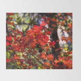 Red Fall Foliage Throw Blanket