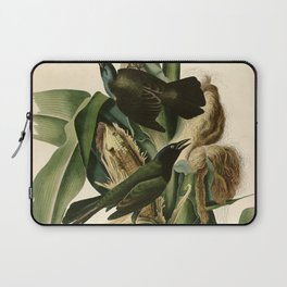 Purple Grackle or Common Crow Blackbird (Quiscalus quiscula) Laptop Sleeve