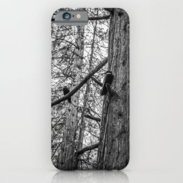 Ravens in the Trees iPhone Case