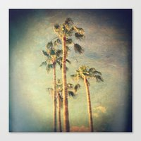 palms Canvas Prints featuring palms by Sylvia Cook Photography