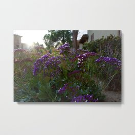 Flowers In The Light Metal Print