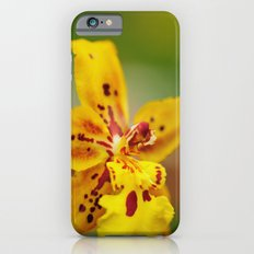 Reach for the Sun Slim Case iPhone 6s
